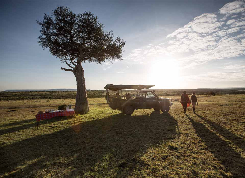 safari masai mara120.jpg