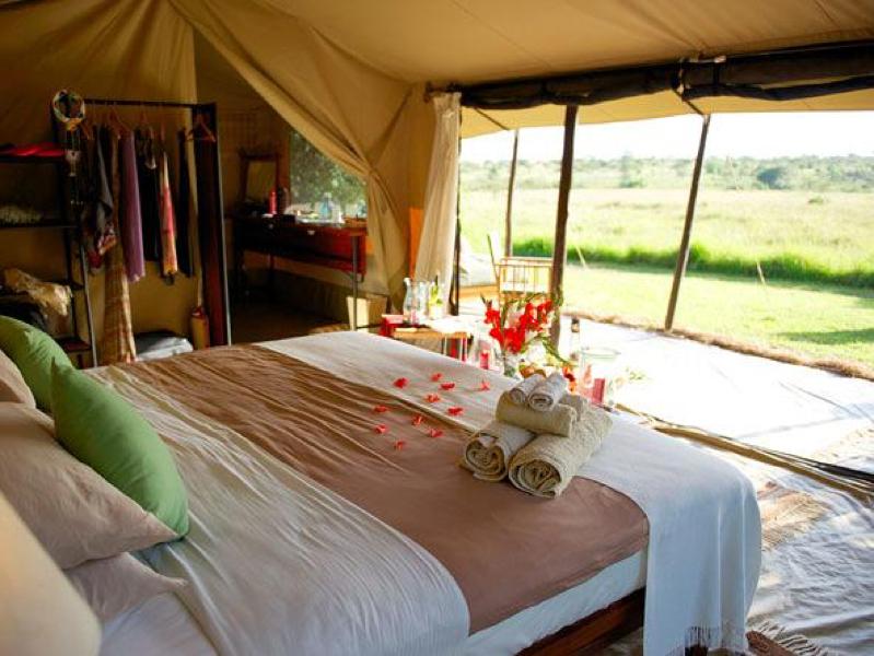 safari masai mara102.jpg