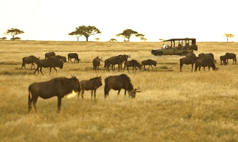 Kenya22.jpg