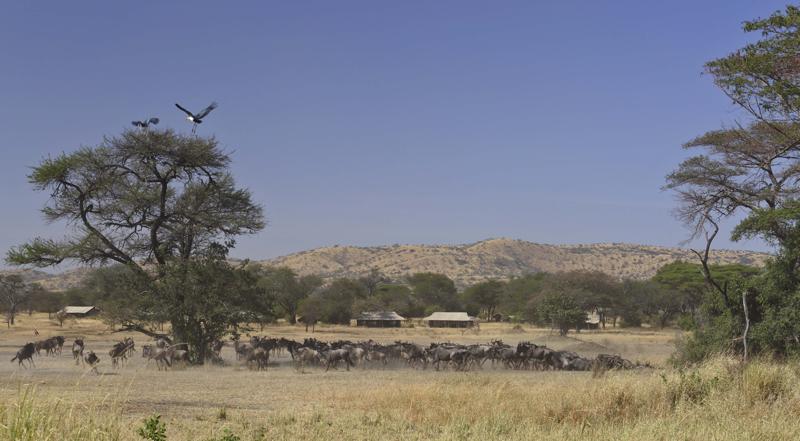 Kenya20.jpg