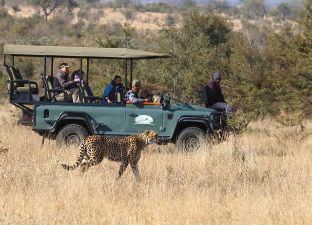 Kruger059.jpg