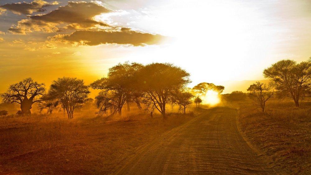 Africa_Photo_Safari_5.jpg