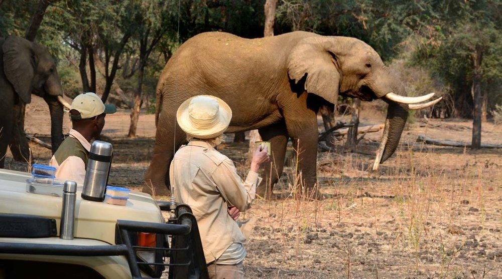 Africa_Photo_Safari_3.jpg