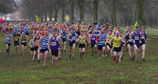 The start of Saturdays Cross Country at Stormont (Photo Courtesy of NICS AC)