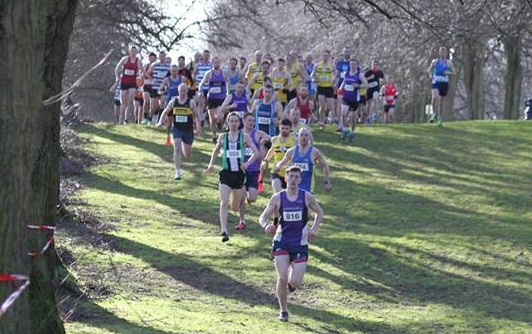 The start of the Stormont XC (photo Dermot Boyd)