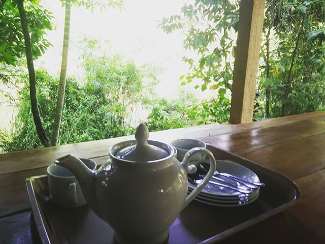 Tea with a river view. Wonderful visit to Kithulgala camp run by @thekithulgalagram this weekend. Any bird watchers out there will find this place truly stunning... #birdwatching #kithulgala #srilankatravel #srilanka #kelaniriver