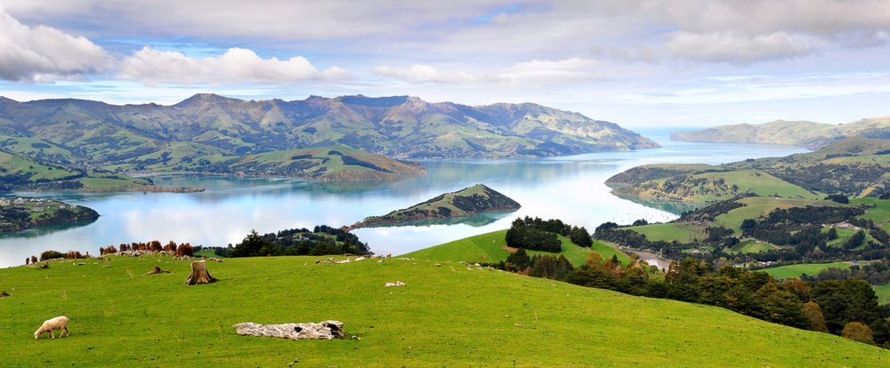 Banks Peninsula NZ copy.jpeg