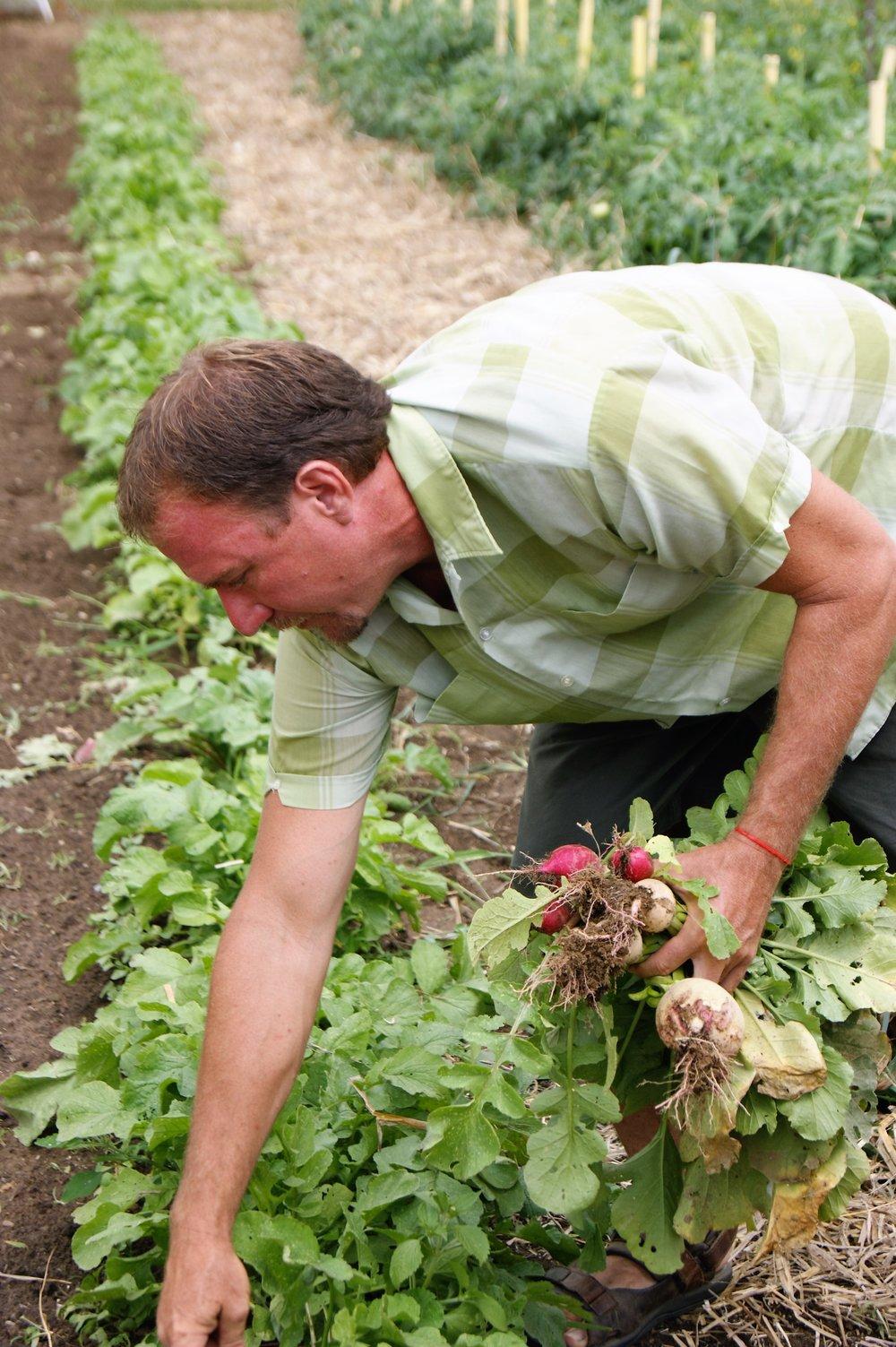 the farmers -