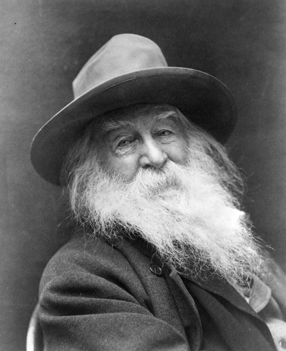 Walt Whitman in   1887