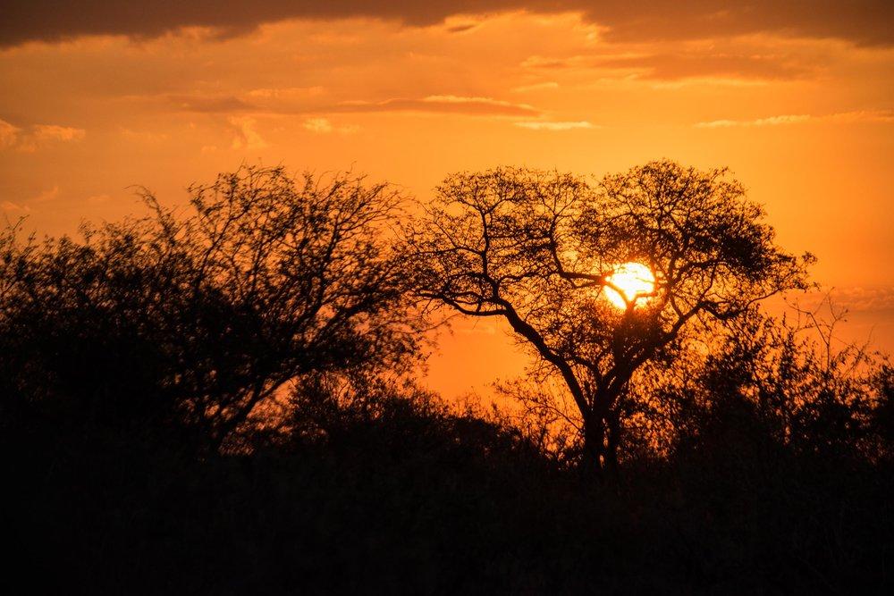 20170505South Africa-021.jpg