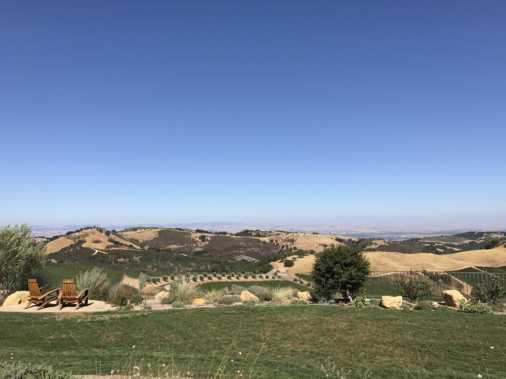 View from Daou Vineyards and Winery