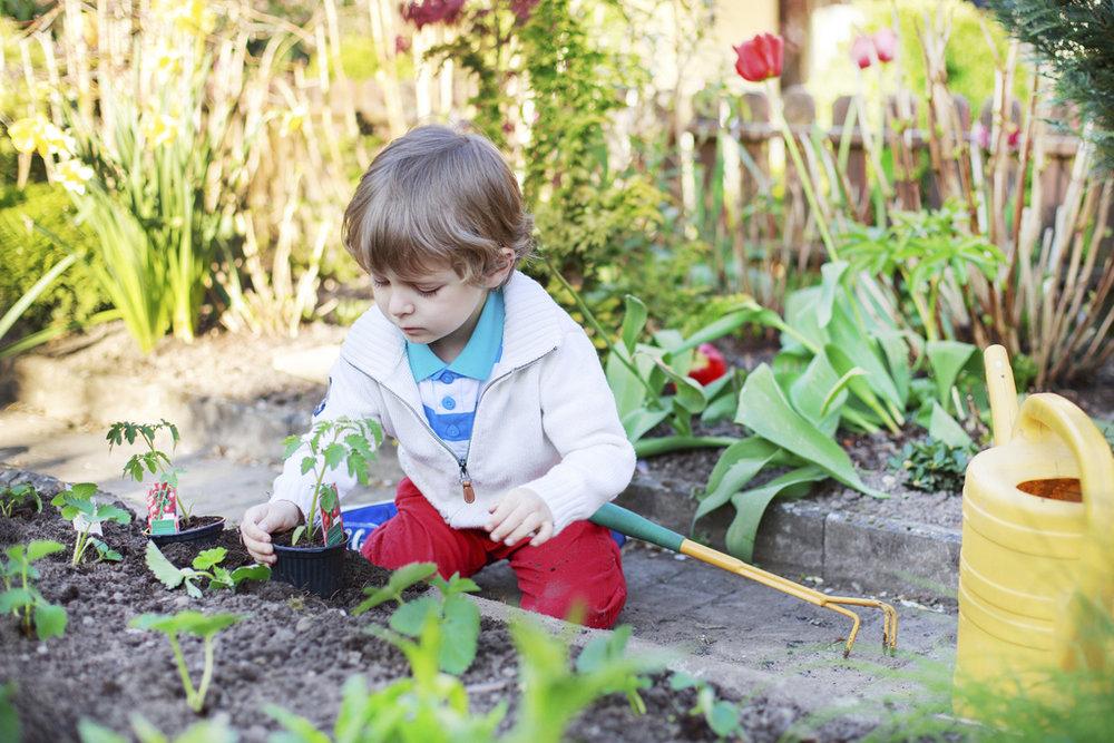 jardinage-enfant-potager.jpg