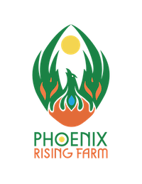 phoenixrisinglarge.png