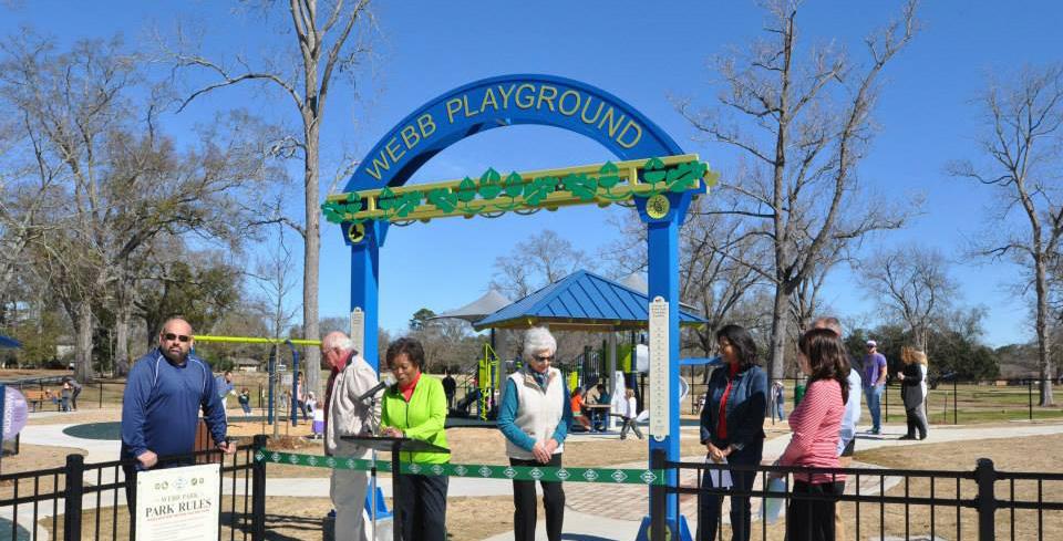 Webb Park Playground Wide.jpg