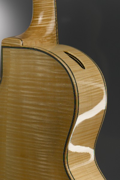 Moderna back detail.jpg