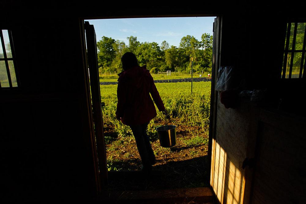 New_Jersey_farming_105A.JPG