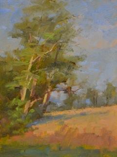 Tanyard Trees