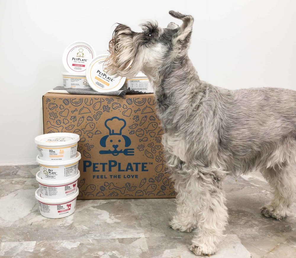 pet-plate-fresh-dog-food-meal-delivery-9.jpg