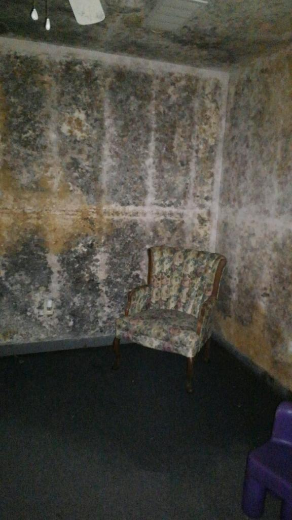 Severe Mold In Church