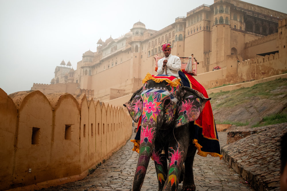 India_2018-385.jpg
