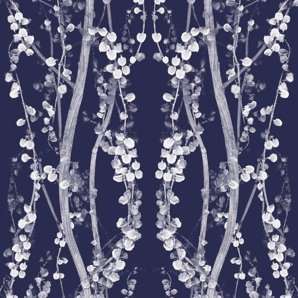 Branches Wallpaper in Mystery Blue by Tempaper from Burke Decor, self adhesive, $98 for 56 square foot bolt, bold darkblue and white wallpaper