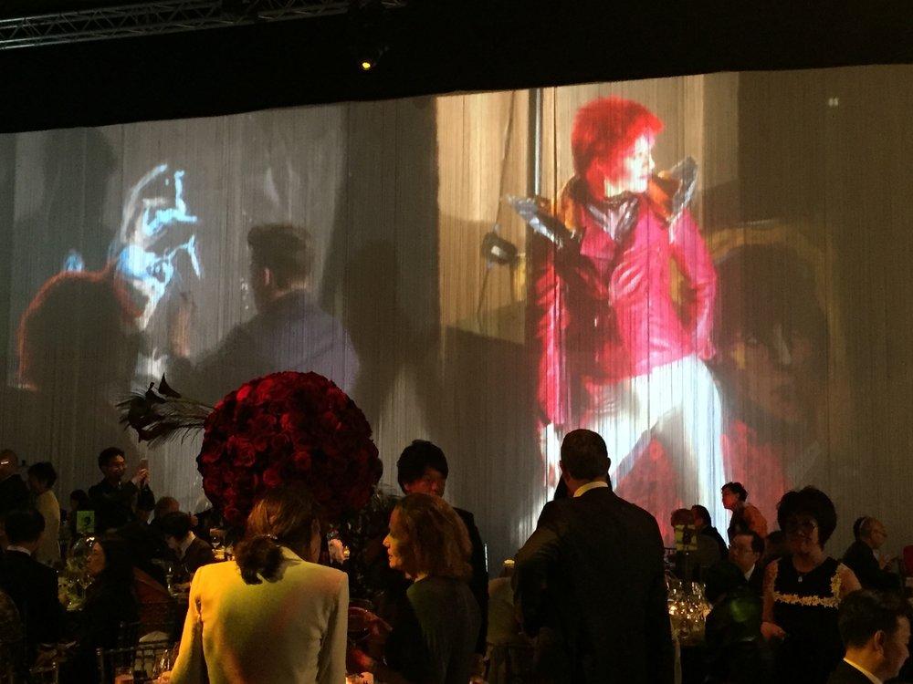 6 Bowie Posing IMG_7922.jpg
