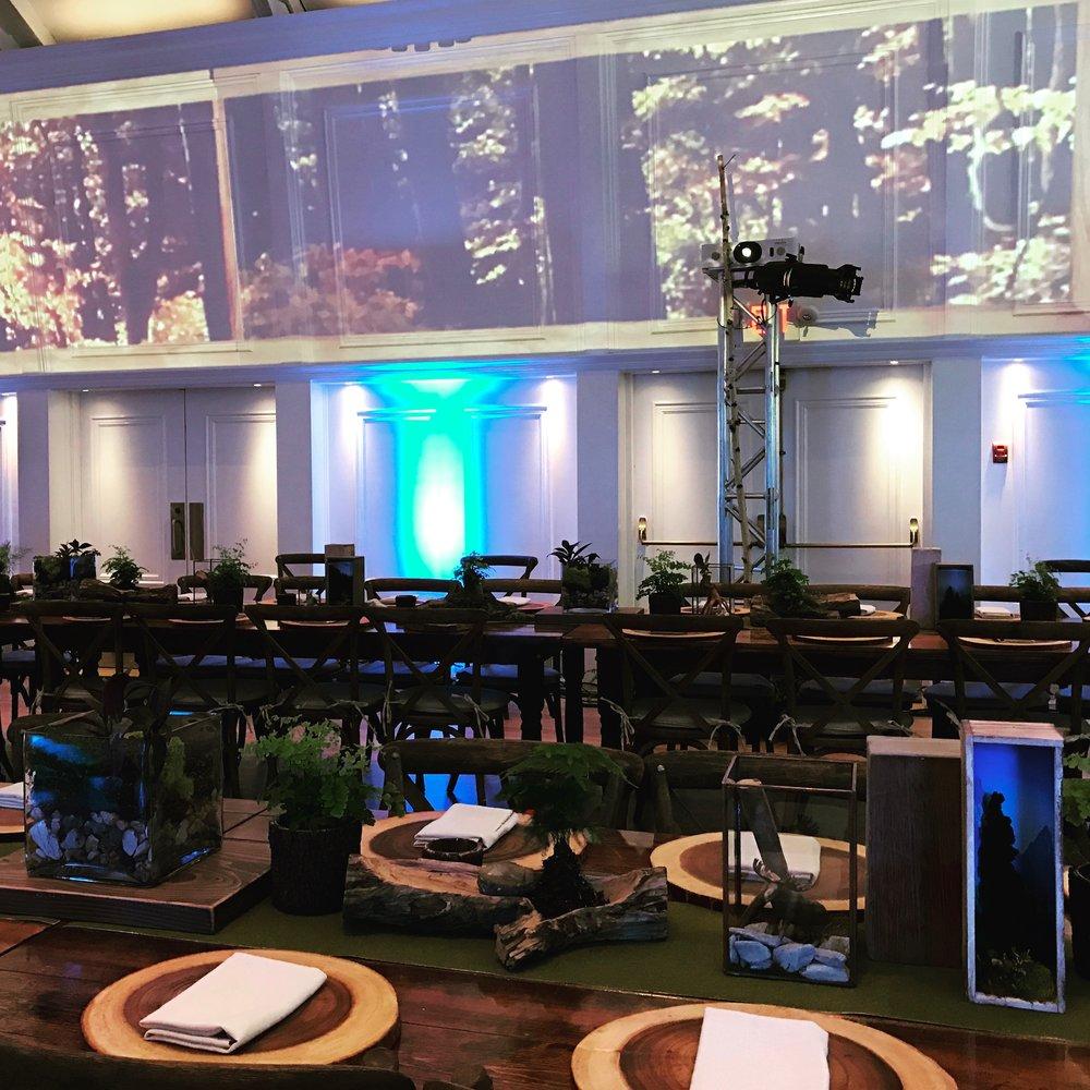 3 Final Room Set IMG_1633.jpg