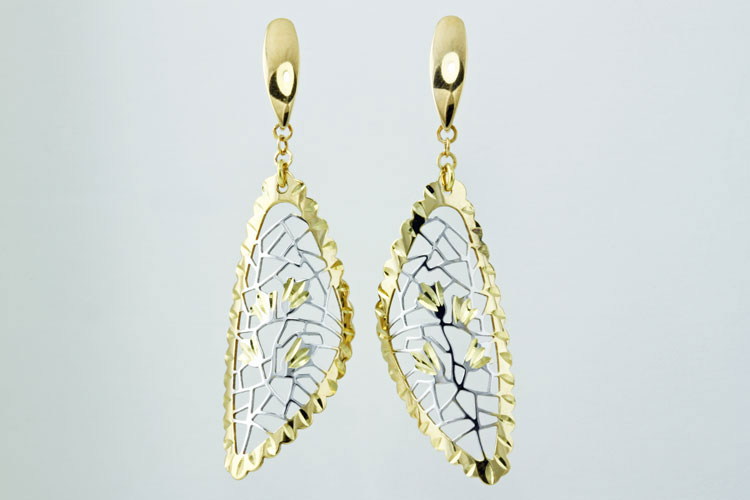 Earrings-3655.jpg