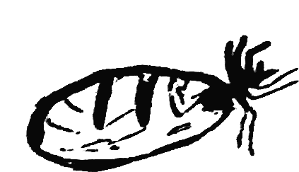 Tjala