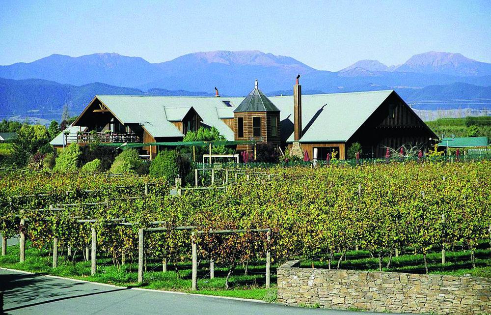 Winery in Nelson