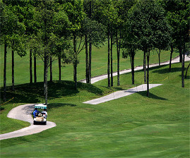 Do you prefer a cart or to walk the course?