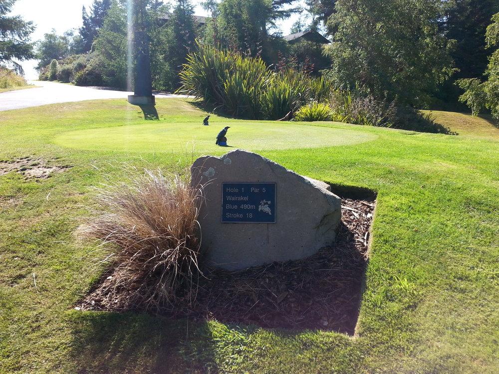 Wairakei Golf + Sanctuary 1st Hole