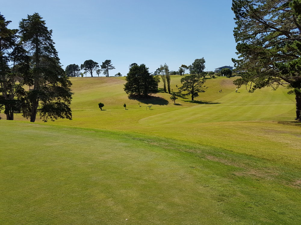 Improve your swing and try it out on a beautiful New Zealand golf course!