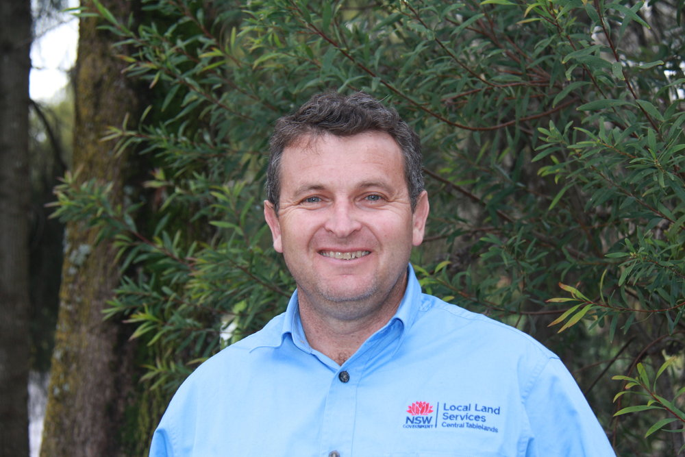 Phil Cranney, Senior Land Services Officer (Pastures), is based in the Orange Central Tablelands Local Land Services Office.