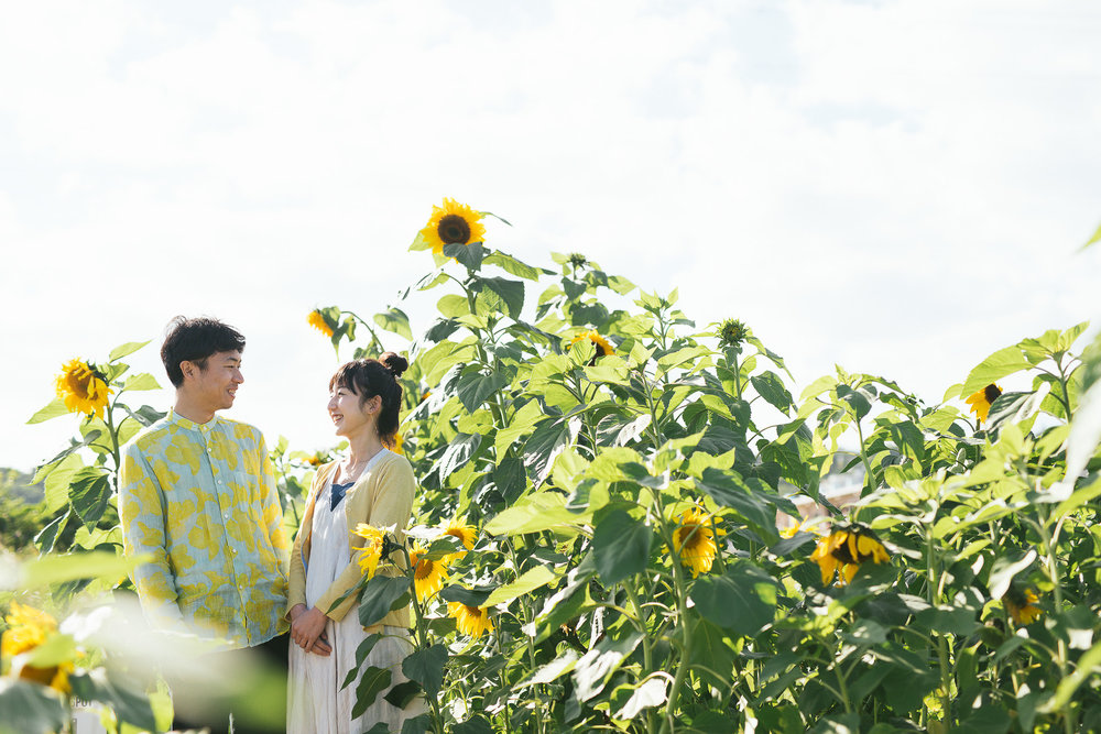 沖縄ひまわり畑.jpg