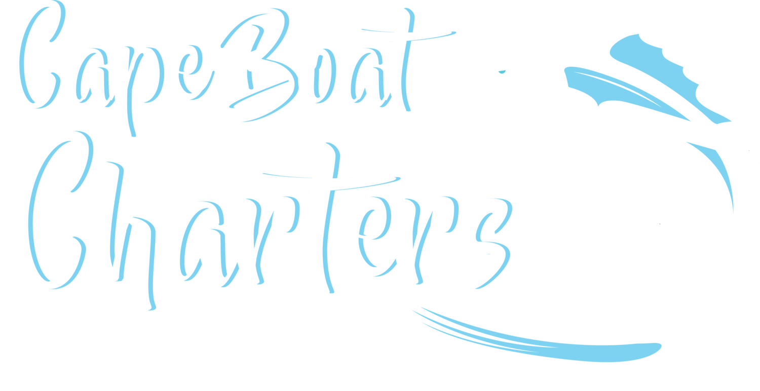 Cape Boat Charters