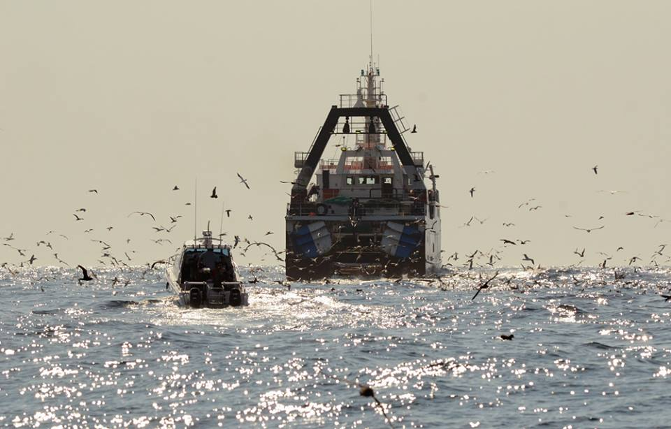 """Our vessel """"DESTINY"""" approaches a trawler 30 nautical miles off Cape Point on a Pelagic Bird Watching Charter!"""
