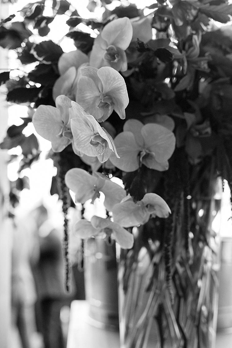 wedding_photography_Melbourne_0156.jpg
