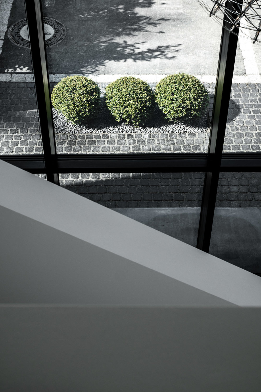 DOMO-Garten-51.jpg