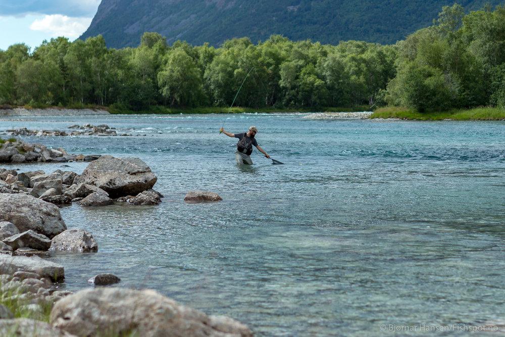 Otta elv - Stongfiske med sluk, spinner, fluge og mark.