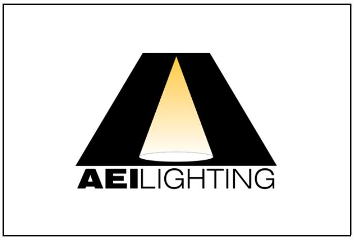 AEI Logo Web.PNG
