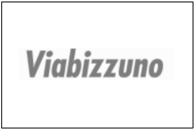Viabizzuno Logo Web.PNG