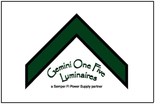 Gemini Logo Web.PNG