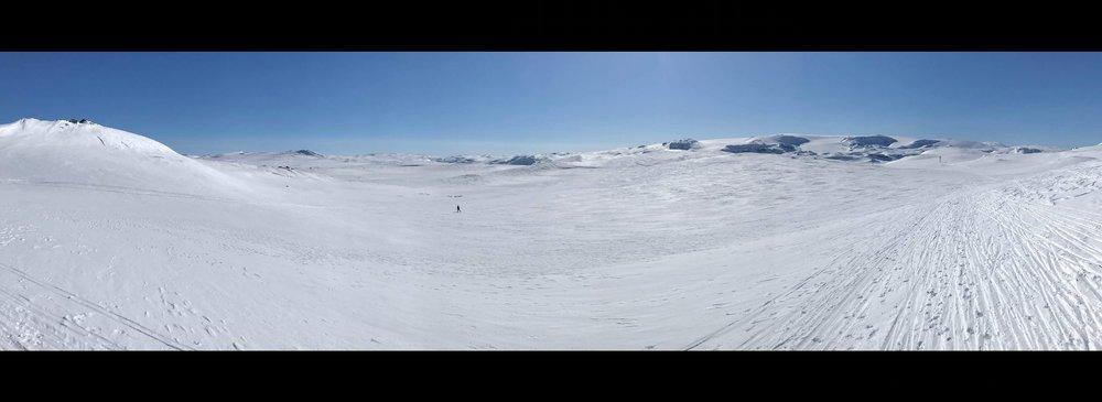 Hallingskarvet Panorama