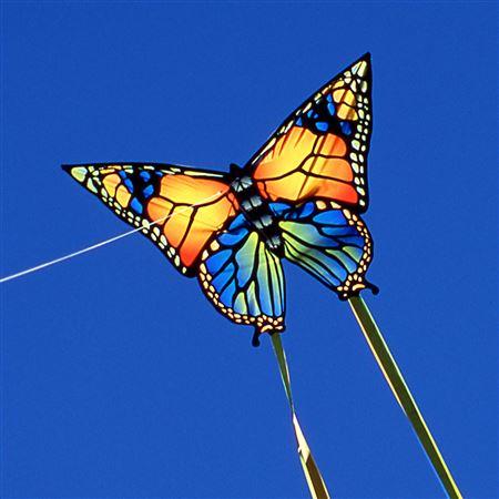 butterflykite5330.jpg