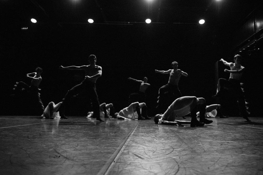 Ensemble - Copyright:Leszek Januszewski