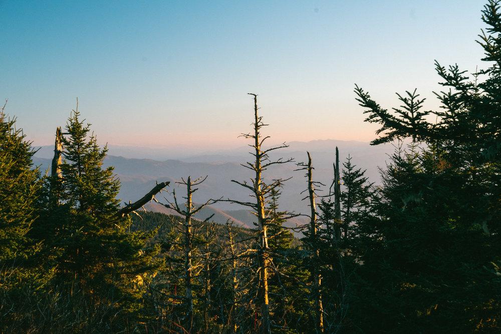 great-smokey-mountains-45.jpg