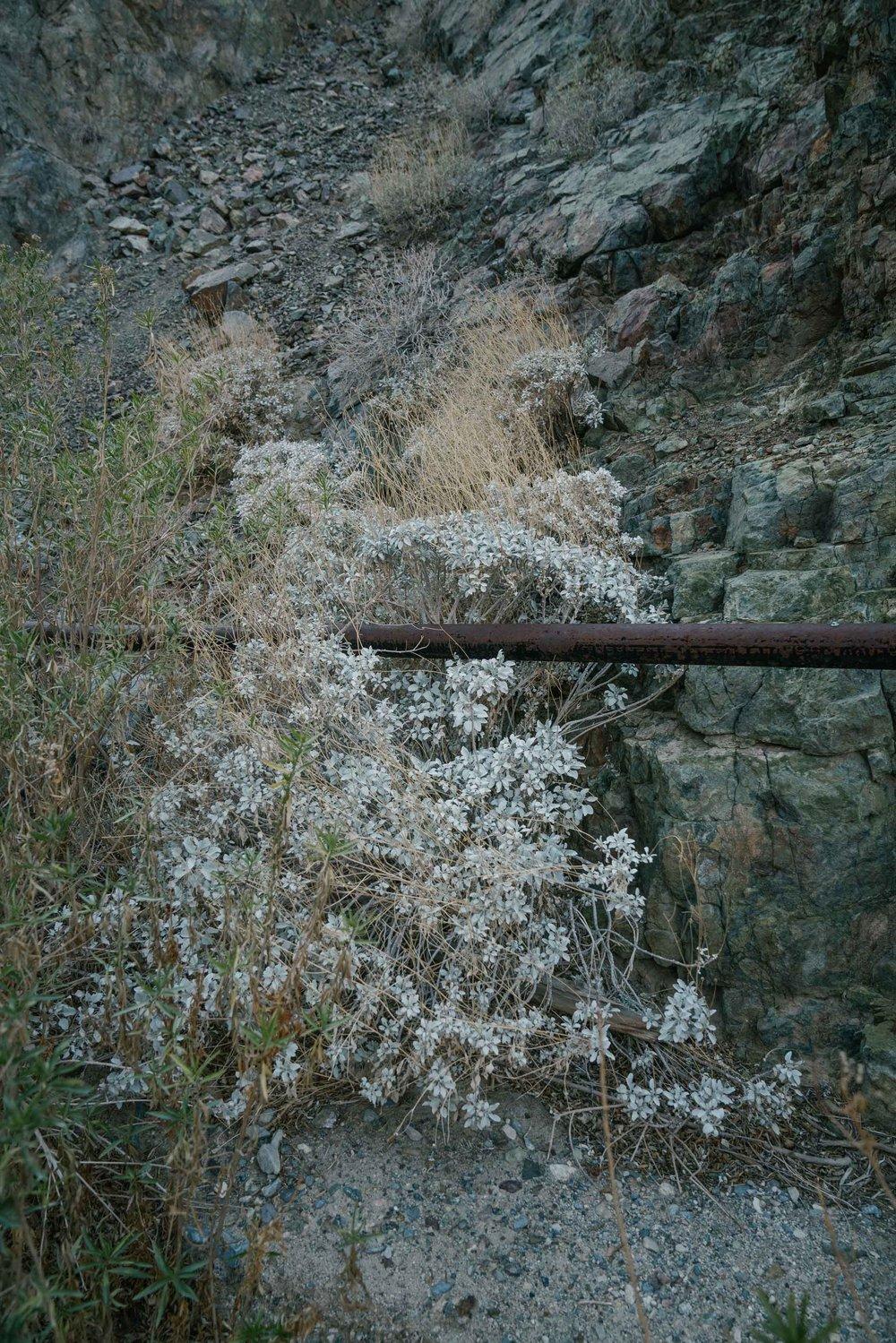 death-valley-43.jpg