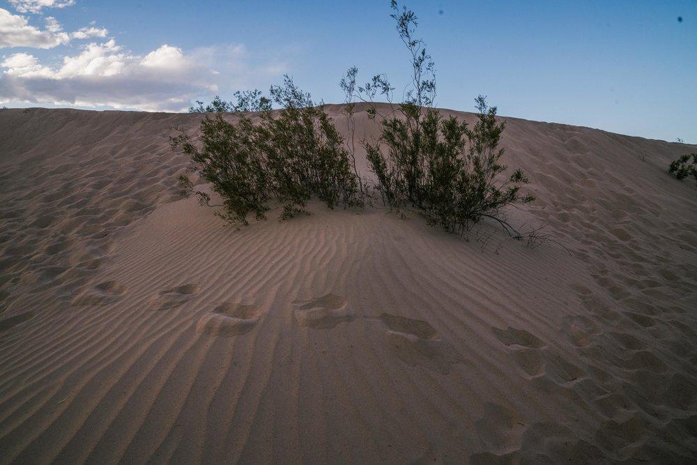 death-valley-316.jpg