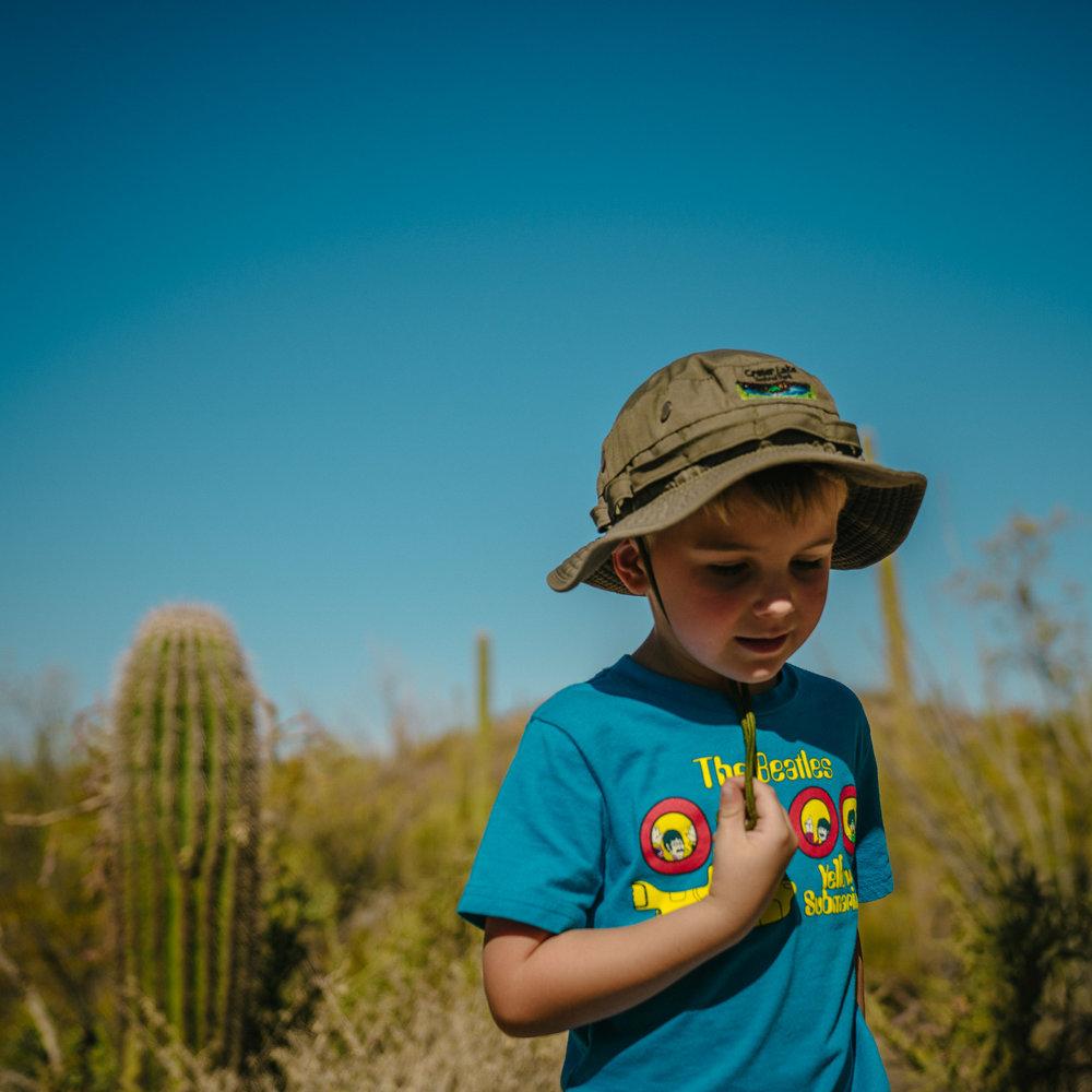 saguaro-23.jpg